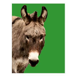 burro postales