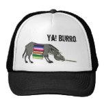 burro, Ya! Burro Hats