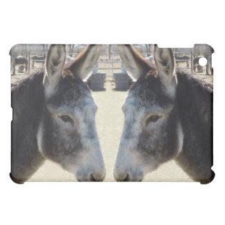 Burros dobles lindos de los burros que ven occiden