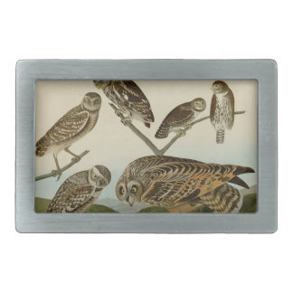 Burrowing, Night, Columbian, and Short-Eared Owls Belt Buckles