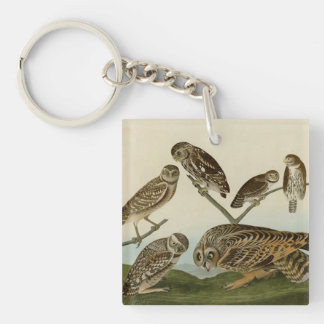 Burrowing, Night, Columbian, and Short-Eared Owls Keychain