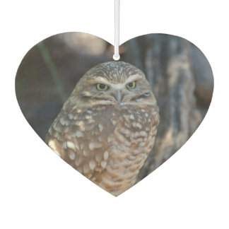 Burrowing Owl Air Freshener