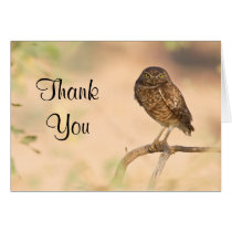 Burrowing Owl  at sunrise , Thank you Card