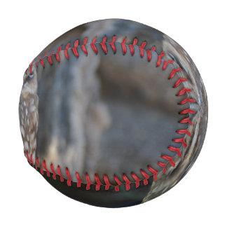 Burrowing Owl Baseball