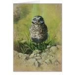 Burrowing Owl, Blank Greetin Card by Andrew Denman