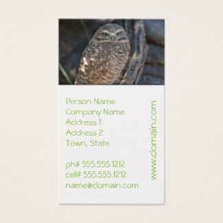 Burrowing Owl Business Card