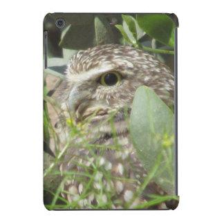 Burrowing Owl iPad Mini Retina Cases