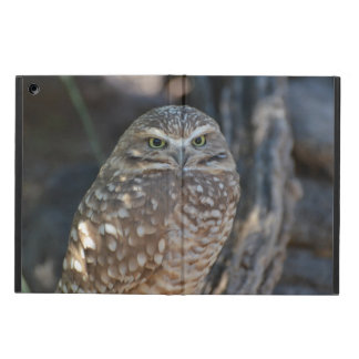 Burrowing Owl Case For iPad Air