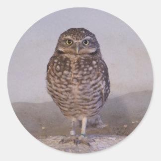 Burrowing Owl Classic Round Sticker