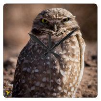 Burrowing Owl Clock