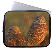 burrowing owl couple laptop sleeve