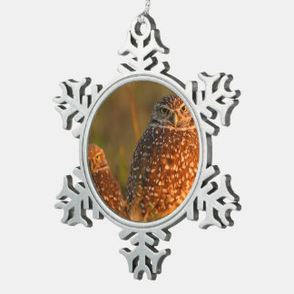 burrowing owl couple snowflake pewter christmas ornament