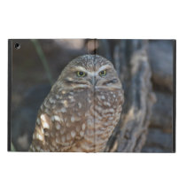 Burrowing Owl Cover For iPad Air