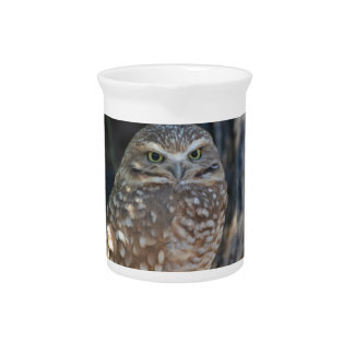 Burrowing Owl Drink Pitcher