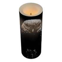 'Burrowing Owl' Flameless Candle