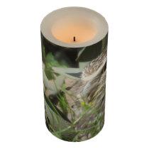 Burrowing Owl Flameless Candle