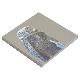 Burrowing Owl Gallery Wrap