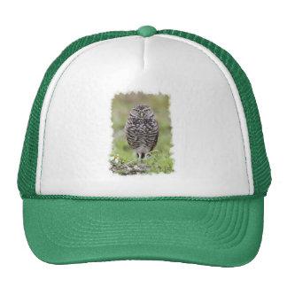Burrowing Owl Mesh Hat