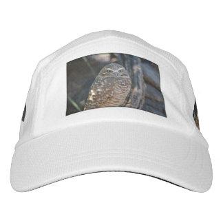Burrowing Owl Headsweats Hat
