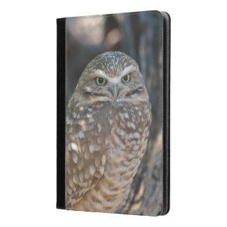 Burrowing Owl iPad Air Case