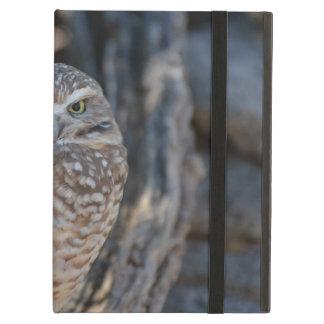 Burrowing Owl iPad Air Cover