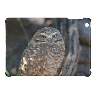 Burrowing Owl iPad Mini Cover