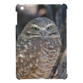 Burrowing Owl iPad Mini Covers