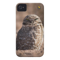 Burrowing Owl iPhone 4 Case