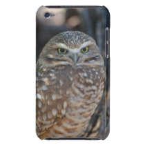 Burrowing Owl iPod Touch Cover
