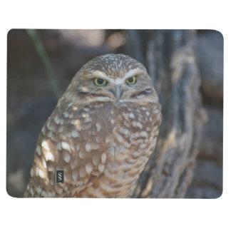 Burrowing Owl Journal