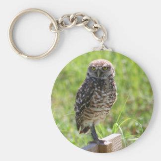 Burrowing Owl keychain