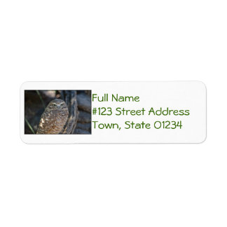 Burrowing Owl Label