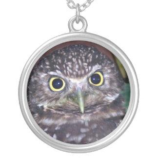 burrowing owl jewelry