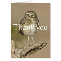 Burrowing Owl on a stick, Thank you Card