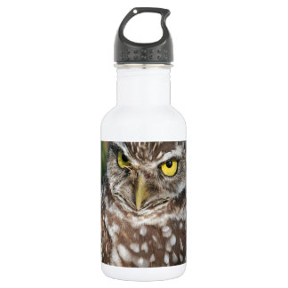Burrowing Owl  peace and confidence Stainless Steel Water Bottle