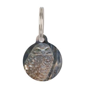 Burrowing Owl Pet Tag