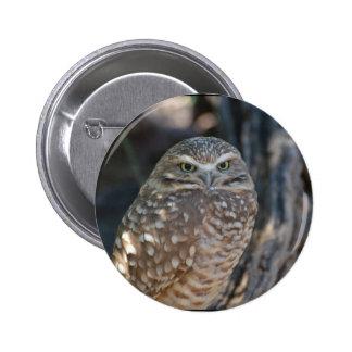 Burrowing Owl Pinback Button