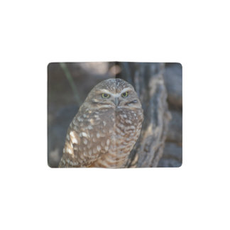 Burrowing Owl Pocket Moleskine Notebook