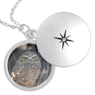 Burrowing Owl Round Locket Necklace