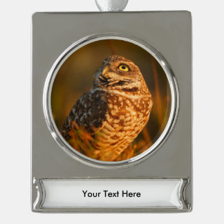 burrowing owl silver plated banner ornament