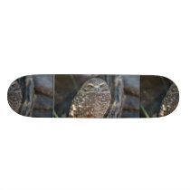 Burrowing Owl Skateboard Deck
