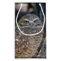 Burrowing Owl Small Gift Bag
