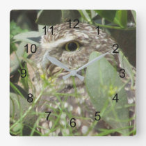 Burrowing Owl Square Wall Clock