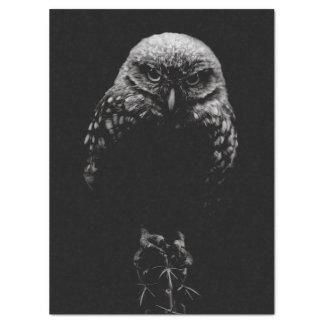 'Burrowing Owl' Tissue Paper