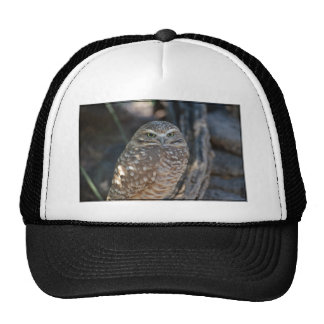 Burrowing Owl Trucker Hat