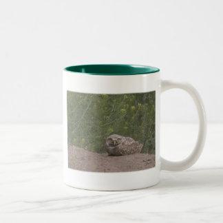 Burrowing Owl Two-Tone Coffee Mug