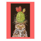 burrowing owl with cactus hat postcard