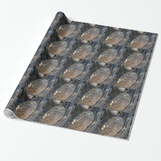 Burrowing Owl Wrapping Paper