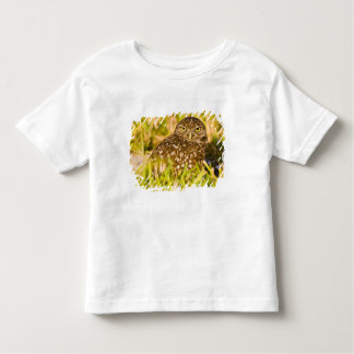 Burrowing owls are a popular site on Marco 3 Toddler T-shirt