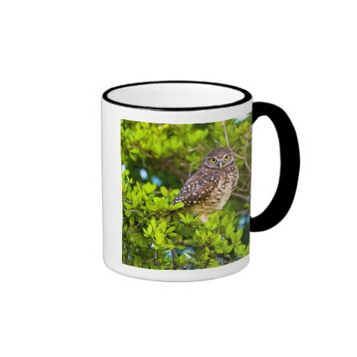 Burrowing owls are a popular site on Marco Ringer Mug